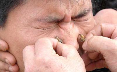 20080603210915-apimedicina-1.jpg
